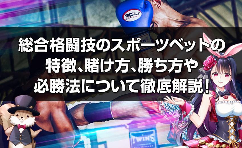 総合格闘技のスポーツベットの 特徴、賭け方、勝ち方や 必勝法について徹底解説!