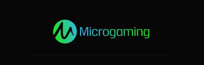 マイクロゲーミング社