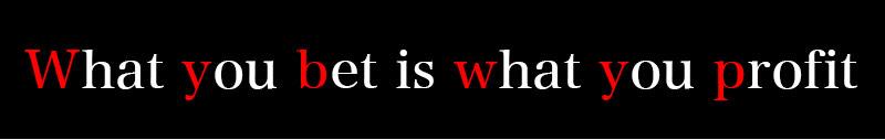 WYBWYPシステムとは?
